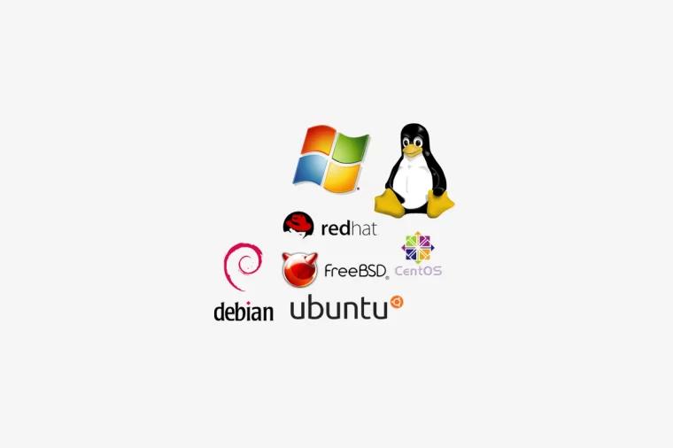 服务器操作系统 Server operating system