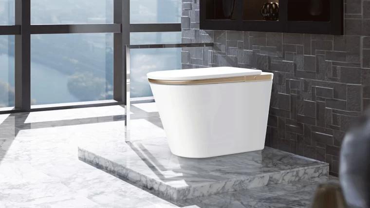 智能马桶 Intelligent toilet