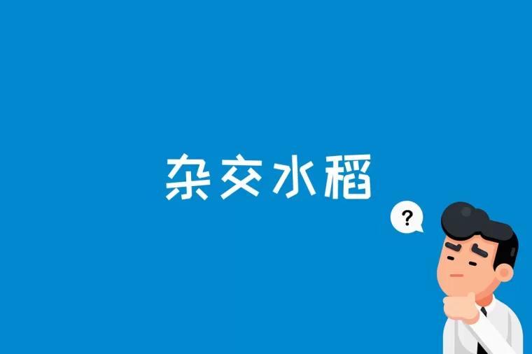 杂交水稻是什么
