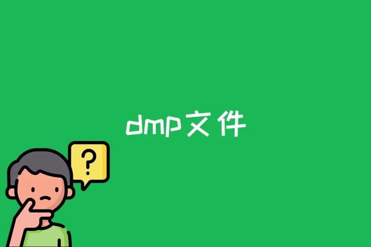 dmp文件是什么